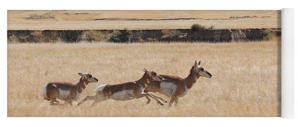 Pronghorn Antelopes On The Run Yoga Mat