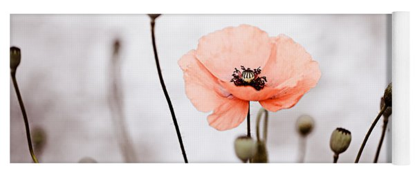 Red Corn Poppy Flowers 01 Yoga Mat