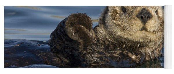Sea Otter Monterey Bay California Yoga Mat
