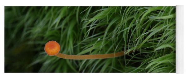 Small Orange Mushroom In Moss Yoga Mat