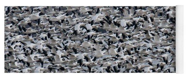 Snow Geese Takeoff Yoga Mat