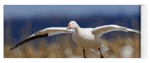Snow Goose Landing Yoga Mat