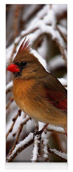 Snowbirds--cardinal Dsb025 Yoga Mat
