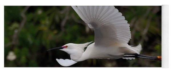 Snowy Egret In Flight Yoga Mat