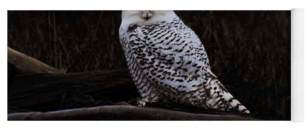 Snowy Owl Two Yoga Mat