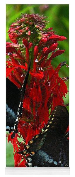 Spicebush Swallowtails Visiting Cardinal Lobelia Din041 Yoga Mat