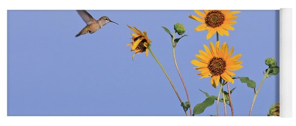 Summer Day Hummingbird Yoga Mat