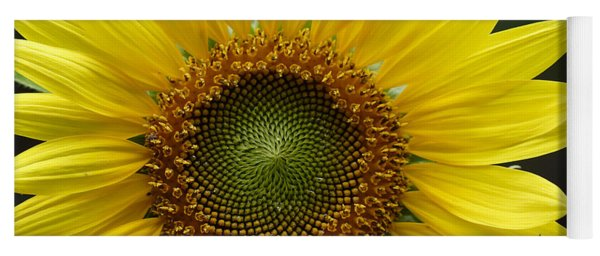Sunflower With Insect Yoga Mat