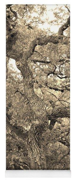 The Wicked Tree Yoga Mat