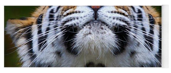 Tiger 1  Yoga Mat