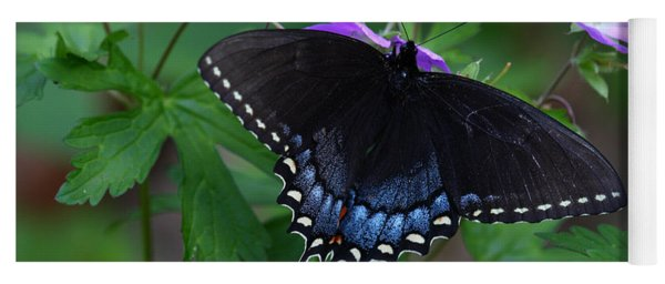 Tiger Swallowtail Female Dark Form On Wild Geranium Yoga Mat
