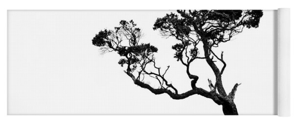 Tree In Black And White Yoga Mat