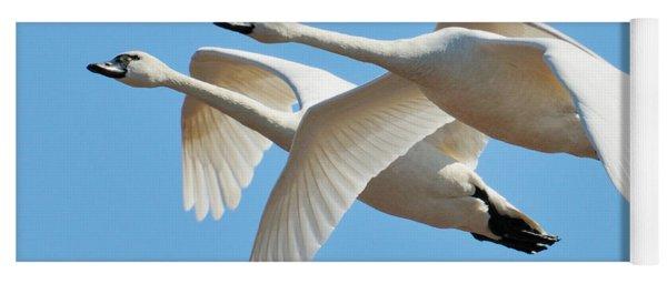 Tundra Swans Yoga Mat