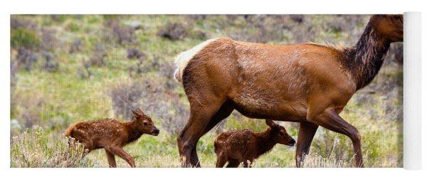 Twin Elk Calves Yoga Mat
