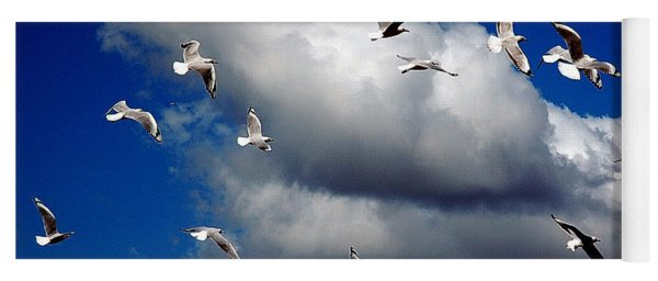 Yoga Mat featuring the photograph Wind Sailing Seagulls by Vicki Ferrari