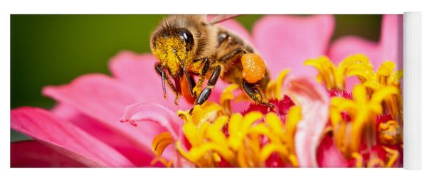 Worker Bee Yoga Mat