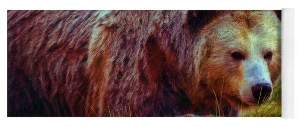 Grizzly Bear In Rocks Yoga Mat
