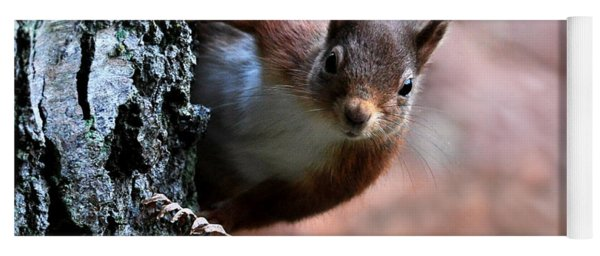 Red Squirrel Yoga Mat