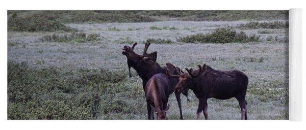 Moose Cameron Pass Co Yoga Mat