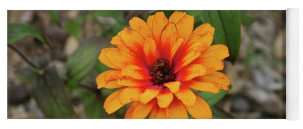 Another Orange Flower Yoga Mat