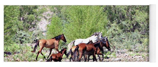Arizona Wild Horses Yoga Mat