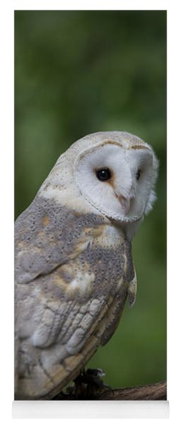 Barn Owl In The Woods Yoga Mat