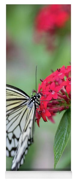 Yoga Mat featuring the photograph Black And White Butterfly  by Raphael Lopez