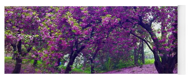 Blossoms In Central Park Yoga Mat