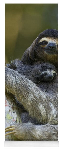 Brown-throated Three-toed Sloth Yoga Mat