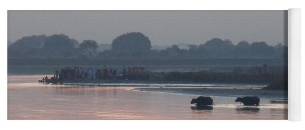 Buffalos Crossing The Yamuna River Yoga Mat