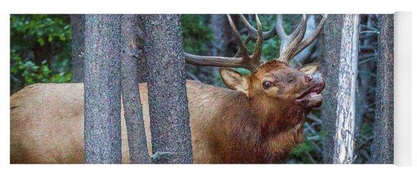Bugling Bull Elk Yoga Mat