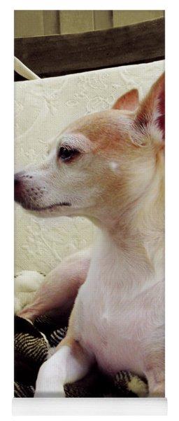 Chihuahua Chiqui Portrait 3 Yoga Mat