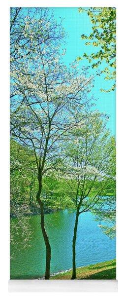 Cluster Of Dowood Trees Yoga Mat