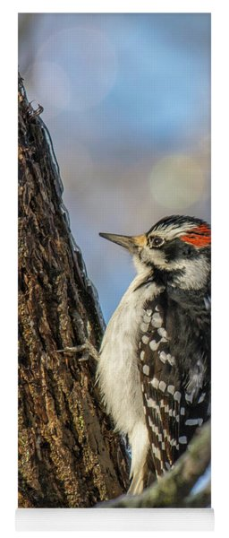 Downy Woodpecker Yoga Mat