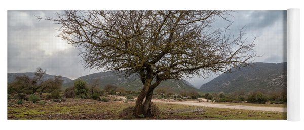 Dry Tree Yoga Mat