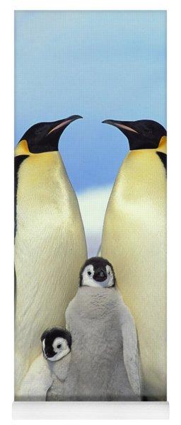 Emperor Penguin Aptenodytes Forsteri Yoga Mat