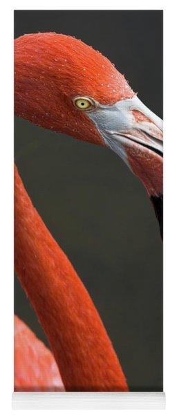 Flamingo Yoga Mat