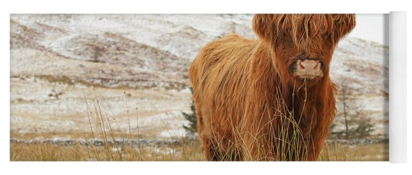 Highland Cow Yoga Mat