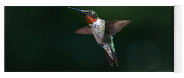 Male Ruby Throated Hummingbird Yoga Mat