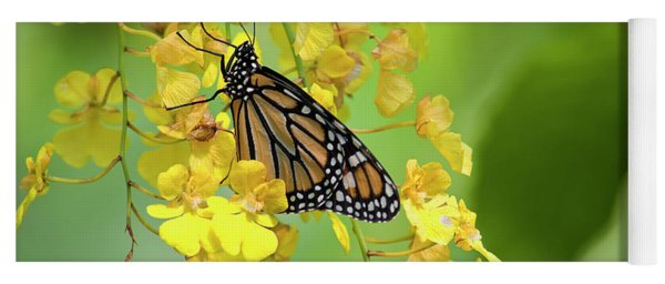 Monarch Butterfly On Yellow Orchids Yoga Mat