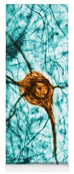 Neuron, Tem Yoga Mat
