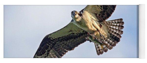 Osprey With Catch Yoga Mat