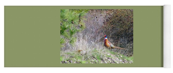Pheasant Country Yoga Mat