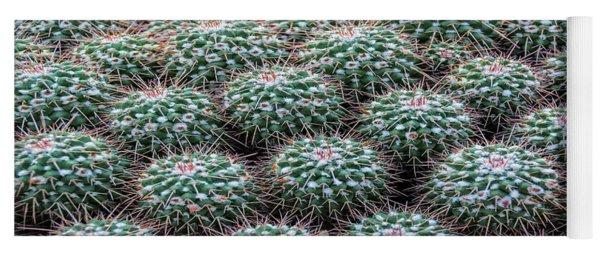 Pincushion Cactus Yoga Mat