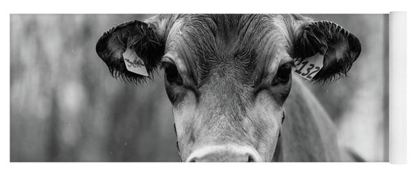 Portrait Of A Dairy Cow In The Rain Stowe Vermont Yoga Mat