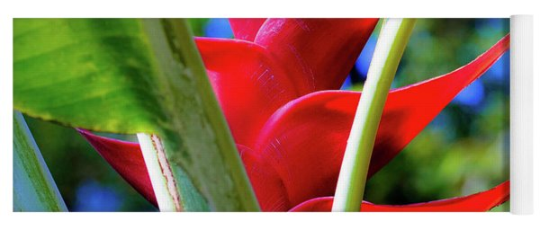 Red Heliconia Hawaii Yoga Mat