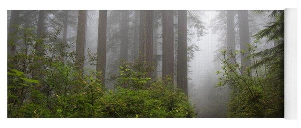 Redwood Grove Yoga Mat