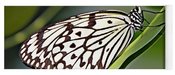 Rice Paper Butterfly 8 Yoga Mat
