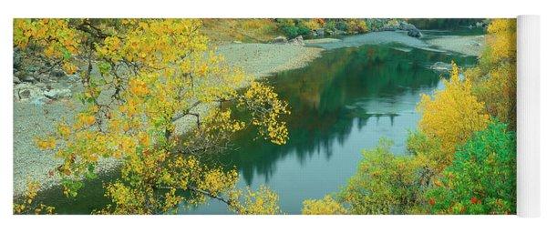 Stream Fall Color Fir Trees Central California Yoga Mat