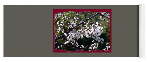Sunlit Apricot Blossoms Yoga Mat
